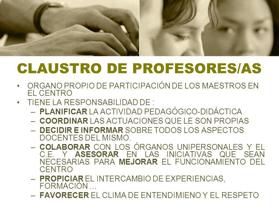 CLAUSTRO DE PROFESORES/AS