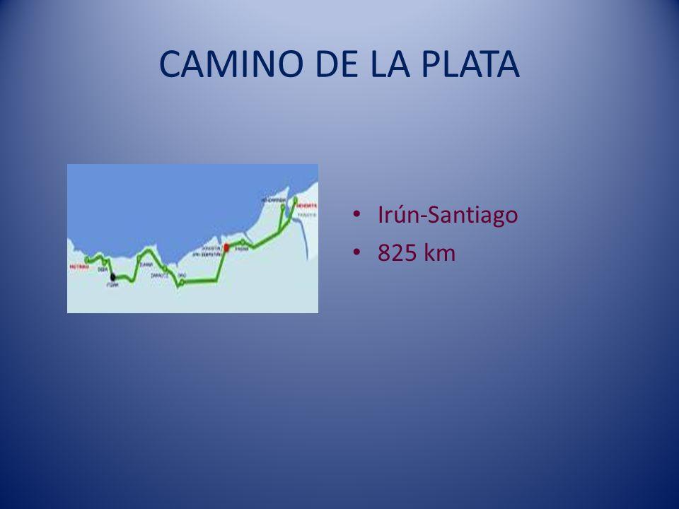 CAMINO DE LA PLATA Irún-Santiago 825 km