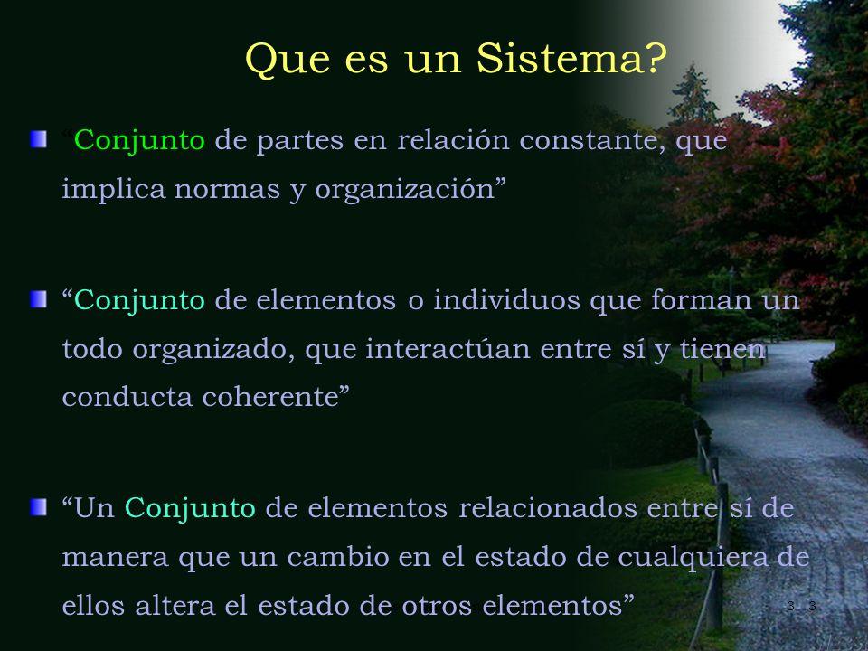 Que es un Sistema Conjunto de partes en relación constante, que implica normas y organización