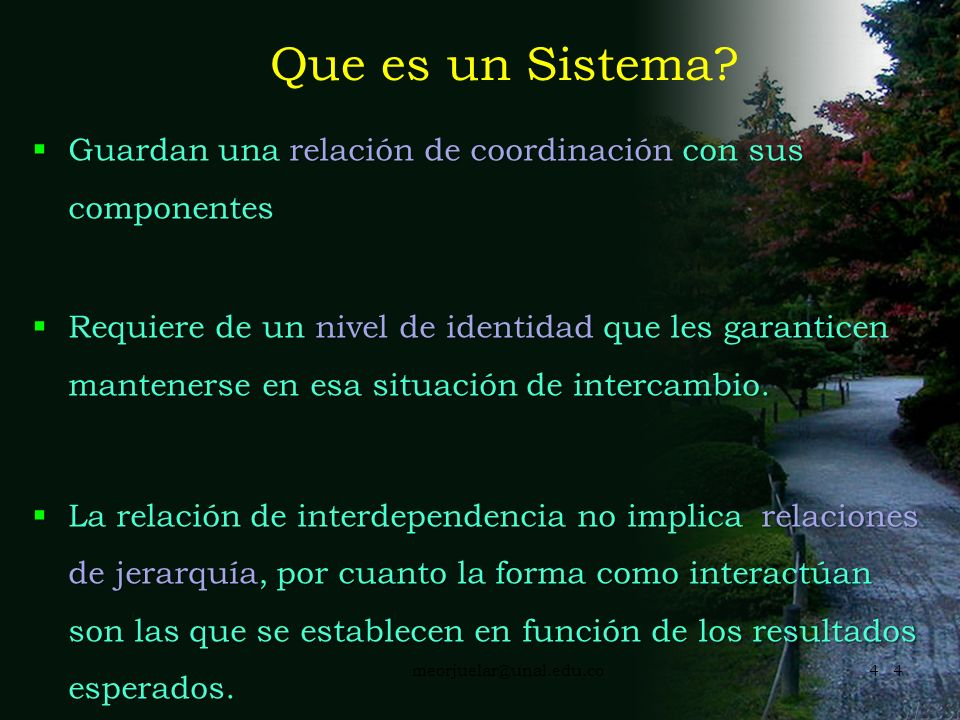 Que es un Sistema Guardan una relación de coordinación con sus componentes.