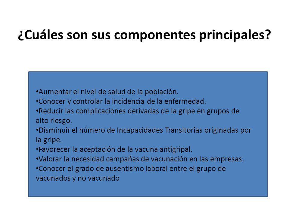 ¿Cuáles son sus componentes principales