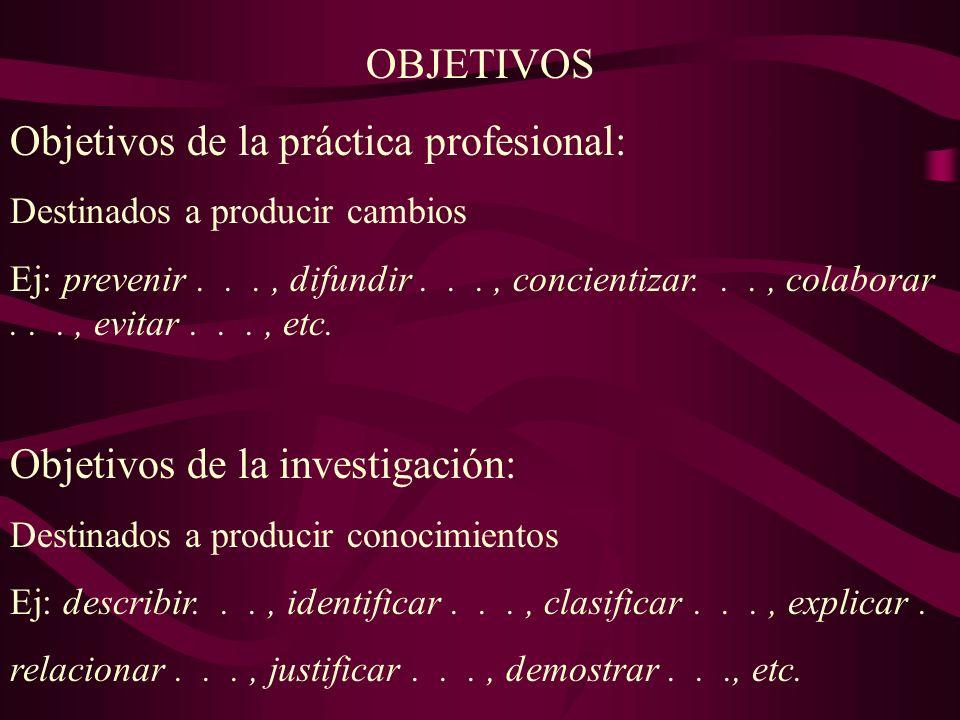Objetivos de la práctica profesional: