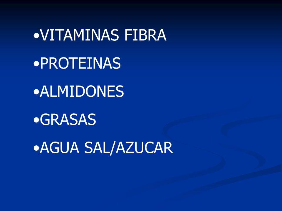 VITAMINAS FIBRA PROTEINAS ALMIDONES GRASAS AGUA SAL/AZUCAR