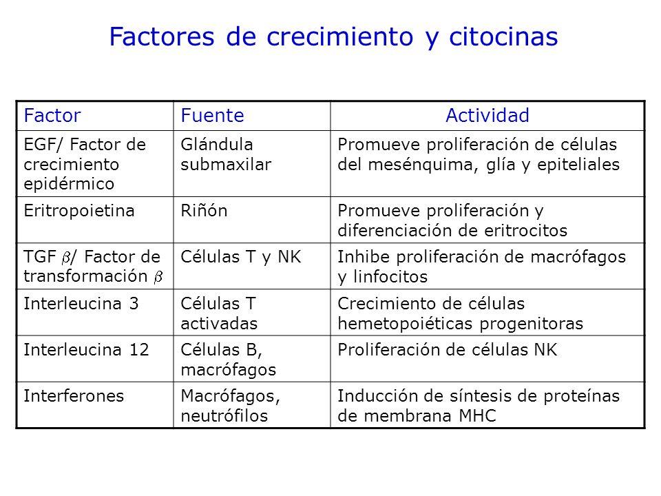 Factores de crecimiento y citocinas
