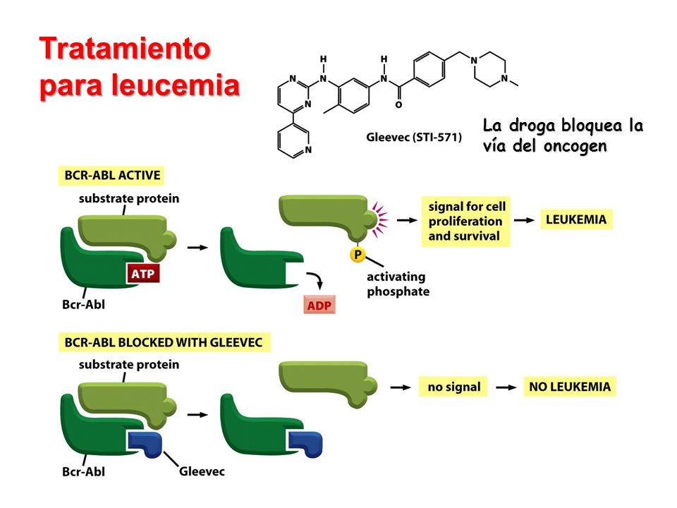 Tratamiento para leucemia