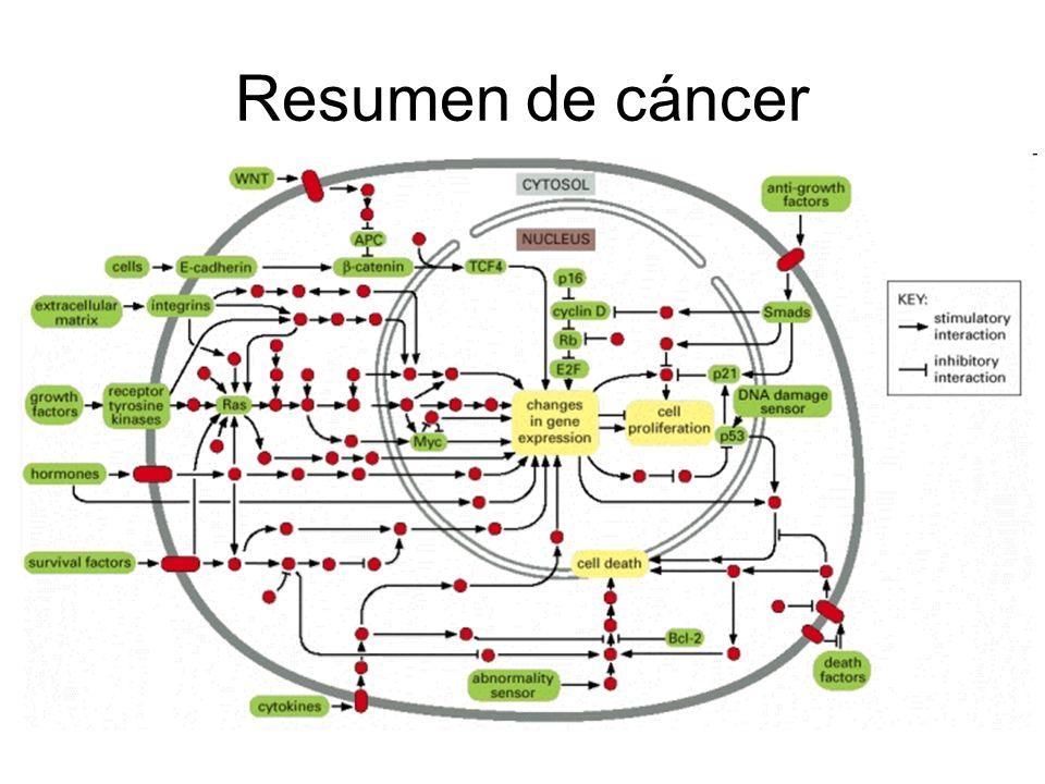 Resumen de cáncer