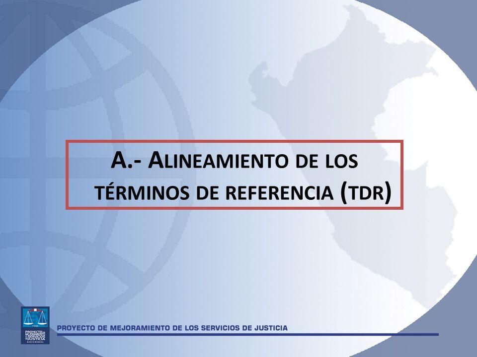 A.- Alineamiento de los términos de referencia (tdr)