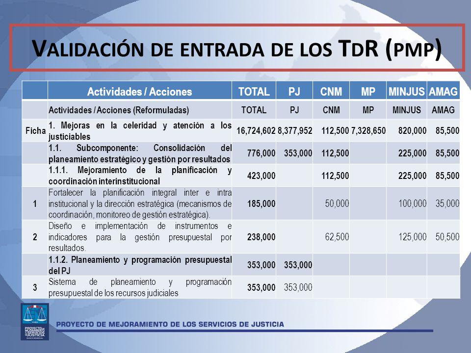 Validación de entrada de los TdR (pmp) Actividades / Acciones