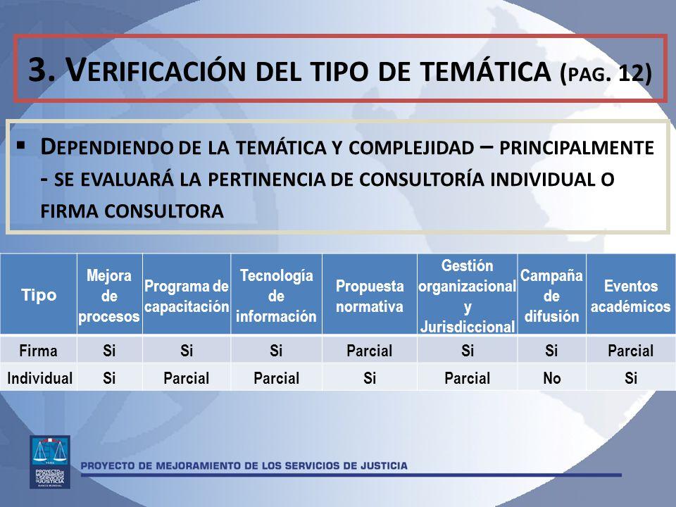 3. Verificación del tipo de temática (pag. 12)