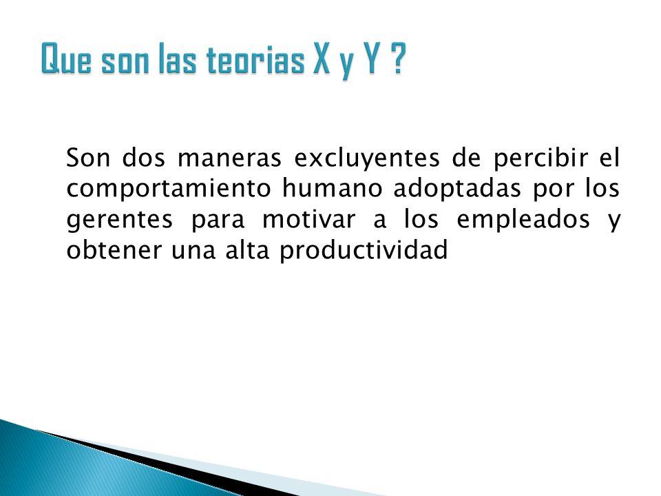 Que son las teorias X y Y