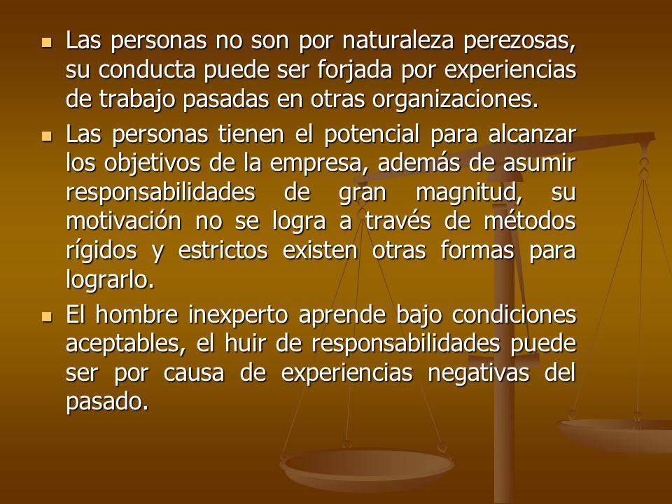 Las personas no son por naturaleza perezosas, su conducta puede ser forjada por experiencias de trabajo pasadas en otras organizaciones.