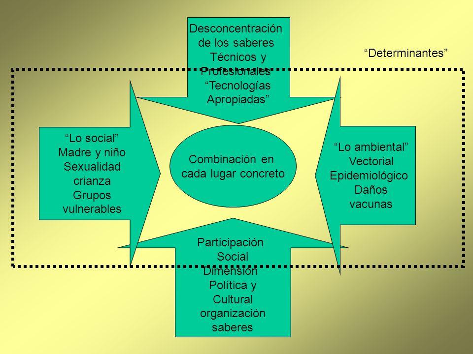 Desconcentración de los saberes. Técnicos y. Profesionales. Tecnologías. Apropiadas Determinantes