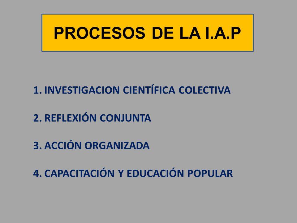 PROCESOS DE LA I.A.P INVESTIGACION CIENTÍFICA COLECTIVA