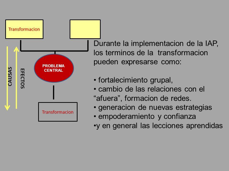Durante la implementacion de la IAP, los terminos de la transformacion