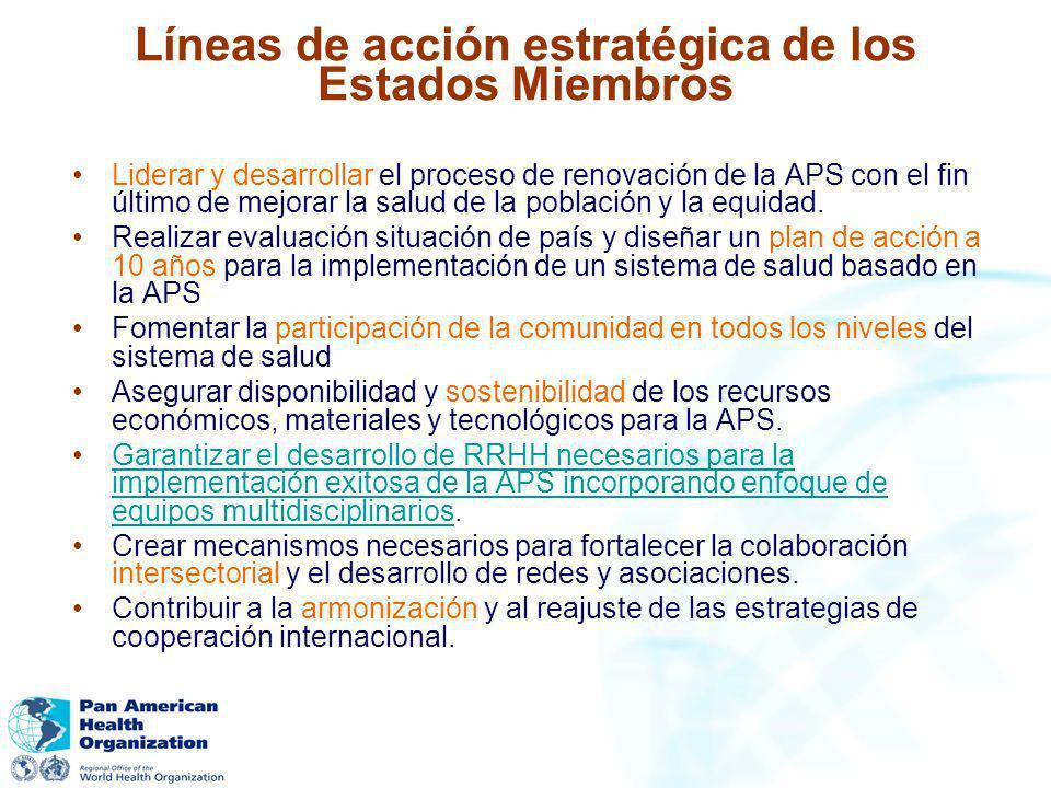 Líneas de acción estratégica de los Estados Miembros