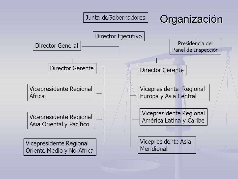 Organización Junta deGobernadores Director Ejecutivo Director General
