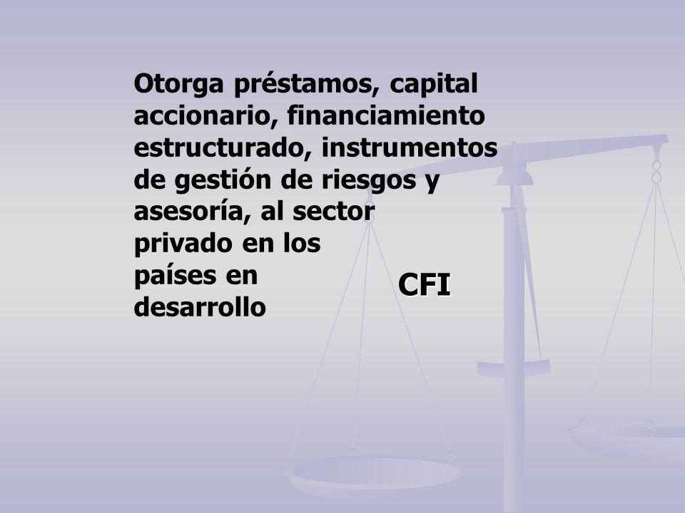 Otorga préstamos, capital accionario, financiamiento estructurado, instrumentos