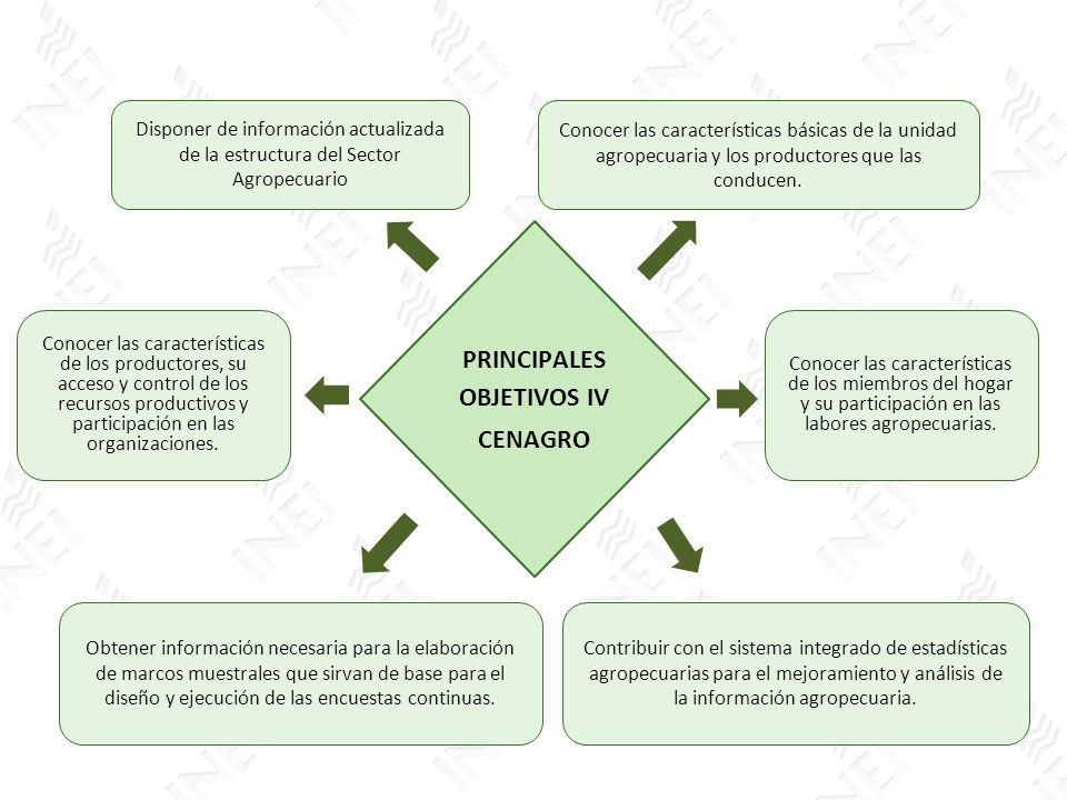 PRINCIPALES OBJETIVOS IV CENAGRO