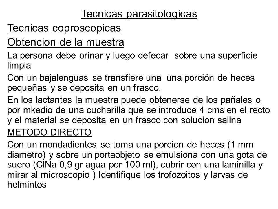 Tecnicas parasitologicas