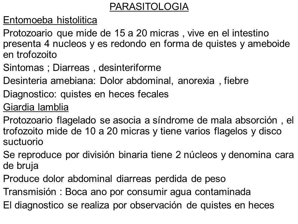 PARASITOLOGIA Entomoeba histolitica.