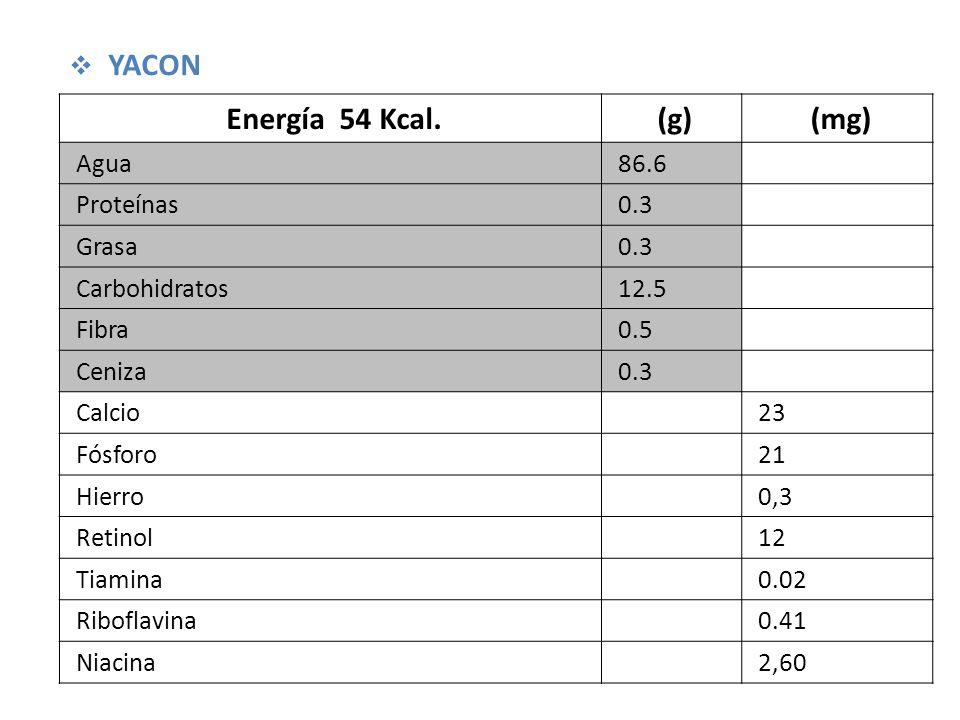 Energía 54 Kcal. (g) (mg) YACON Agua 86.6 Proteínas 0.3 Grasa