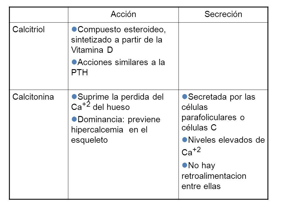 Acción Secreción. Calcitriol. Compuesto esteroideo, sintetizado a partir de la Vitamina D. Acciones similares a la PTH.