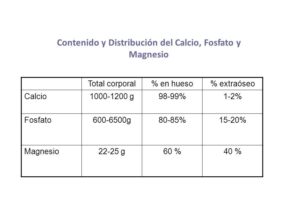 Contenido y Distribución del Calcio, Fosfato y Magnesio