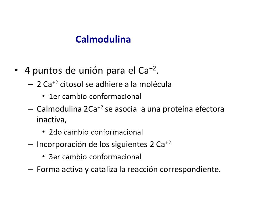 4 puntos de unión para el Ca+2.