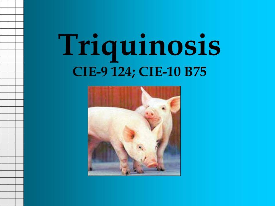 Triquinosis CIE-9 124; CIE-10 B75
