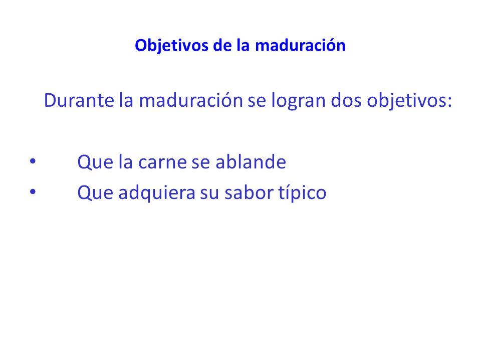 Objetivos de la maduración