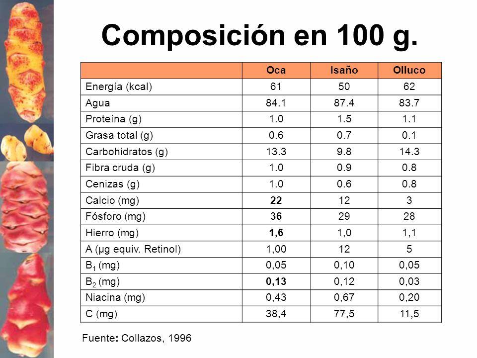 Composición en 100 g. Oca Isaño Olluco Energía (kcal) 61 50 62 Agua