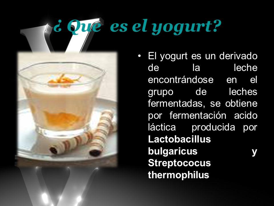 ¿ Que es el yogurt