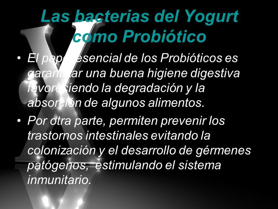 Las bacterias del Yogurt como Probiótico