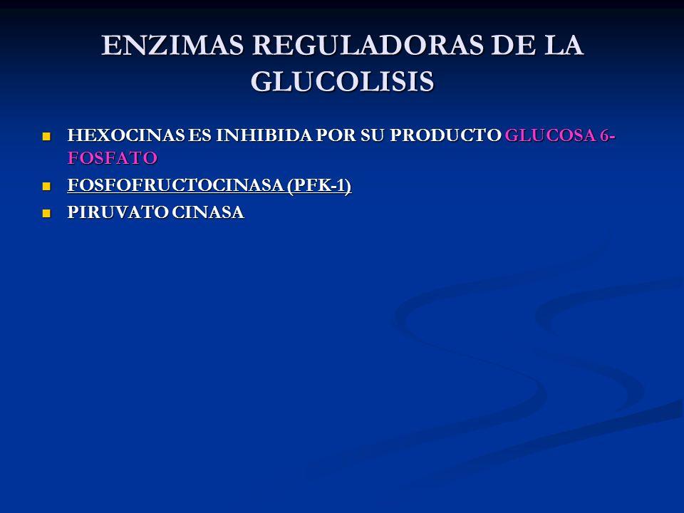 ENZIMAS REGULADORAS DE LA GLUCOLISIS