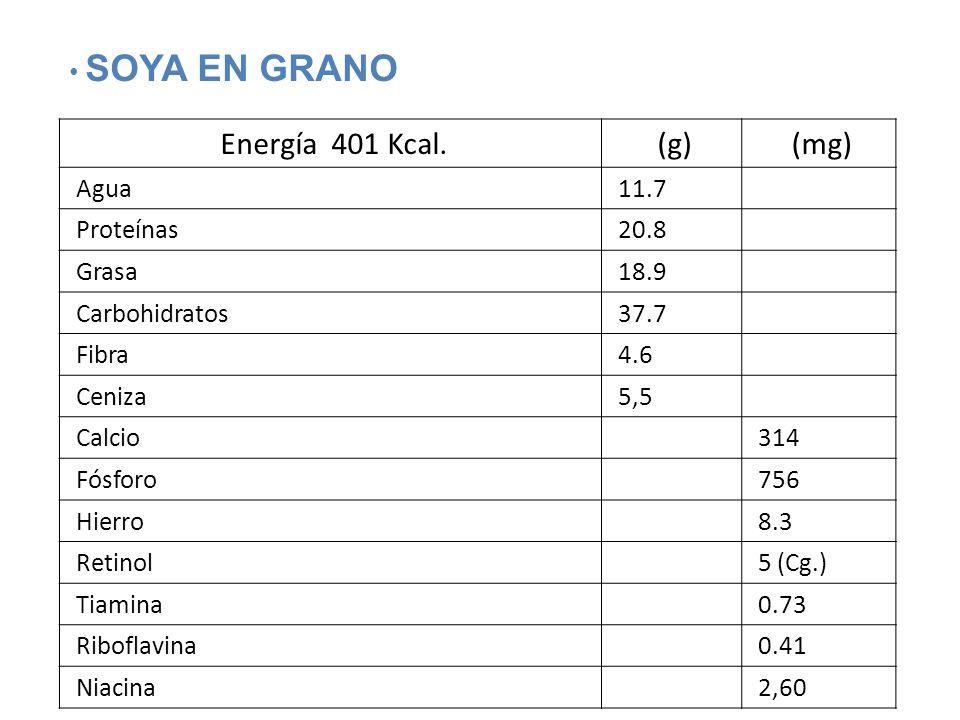 Energía 401 Kcal. (g) (mg) SOYA EN GRANO Agua 11.7 Proteínas 20.8