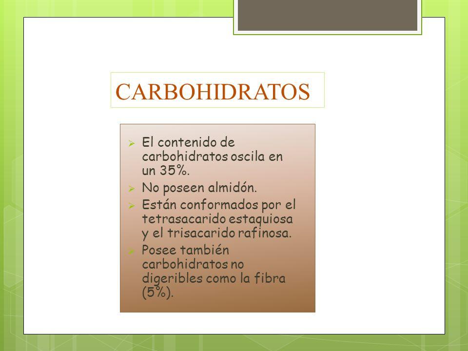 CARBOHIDRATOS El contenido de carbohidratos oscila en un 35%.