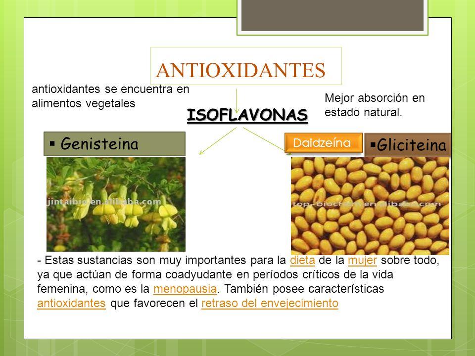 ANTIOXIDANTES ISOFLAVONAS Genisteina Gliciteina