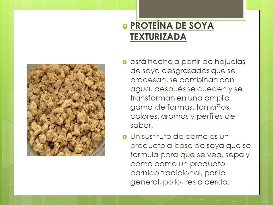PROTEÍNA DE SOYA TEXTURIZADA