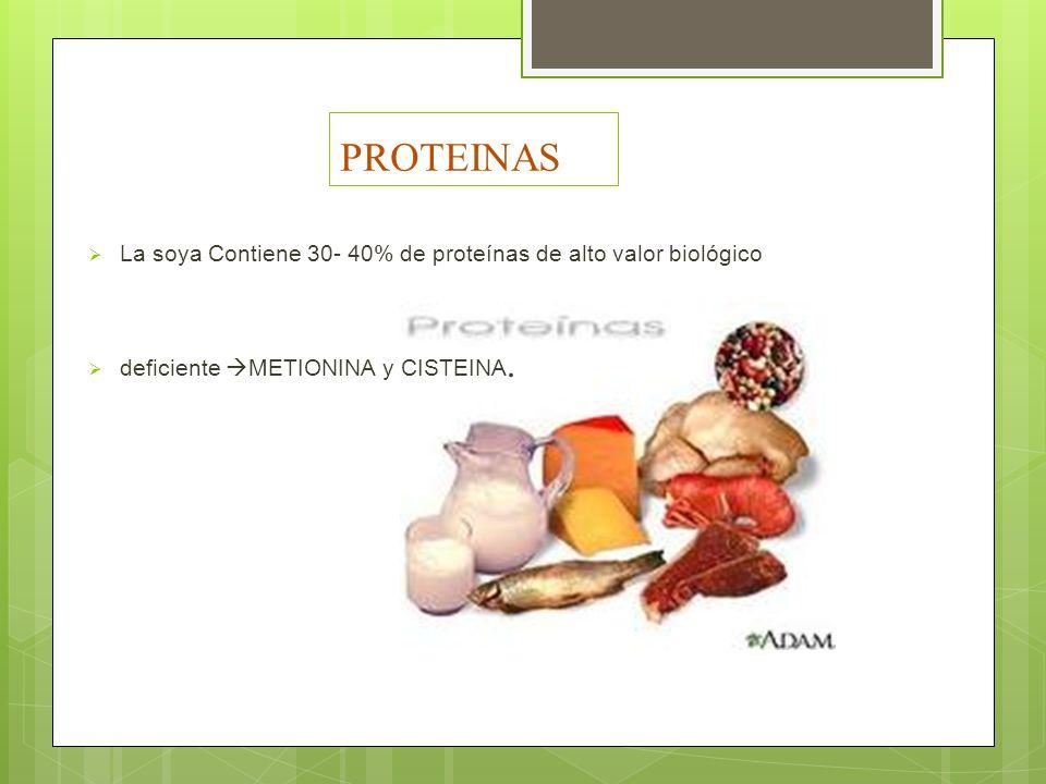 PROTEINAS La soya Contiene 30- 40% de proteínas de alto valor biológico.