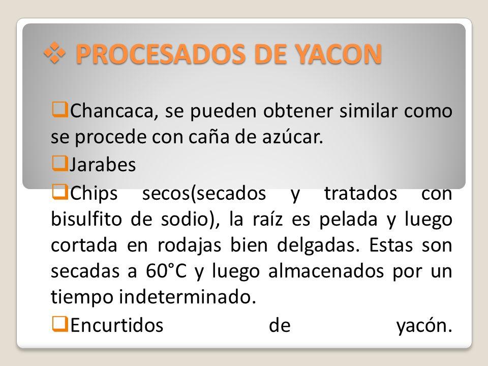 PROCESADOS DE YACONChancaca, se pueden obtener similar como se procede con caña de azúcar. Jarabes.