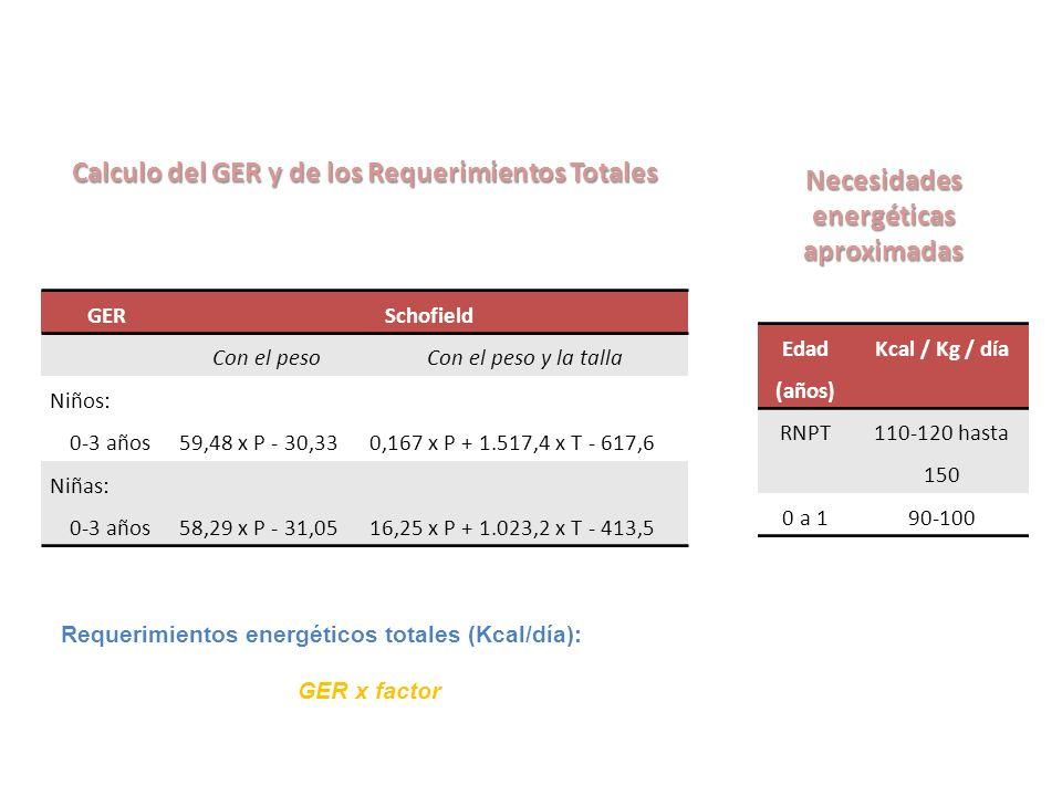 Calculo del GER y de los Requerimientos Totales