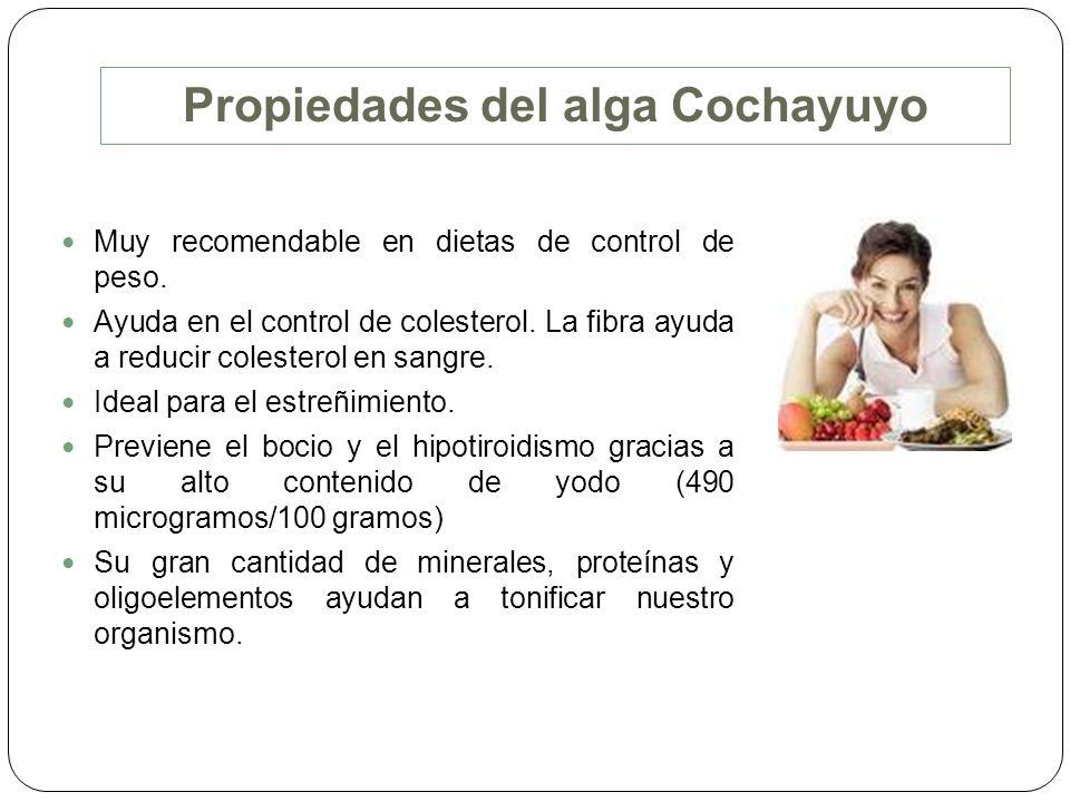 Propiedades del alga Cochayuyo