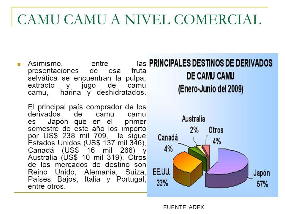 CAMU CAMU A NIVEL COMERCIAL