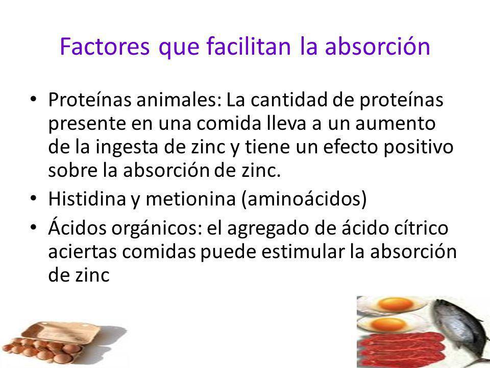 Factores que facilitan la absorción