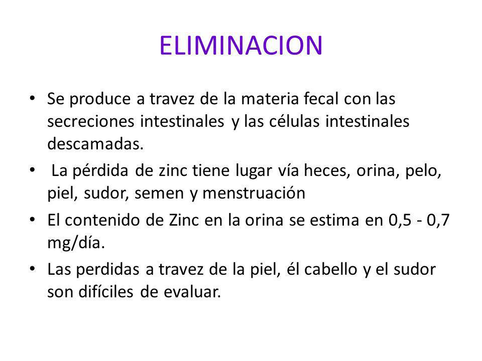 ELIMINACION Se produce a travez de la materia fecal con las secreciones intestinales y las células intestinales descamadas.
