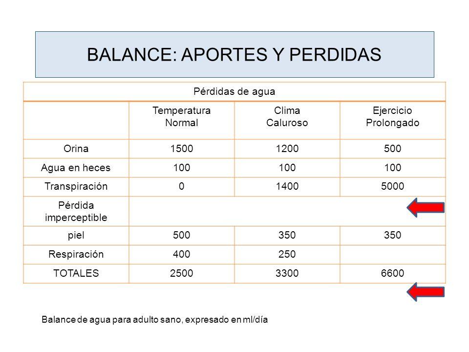 BALANCE: APORTES Y PERDIDAS