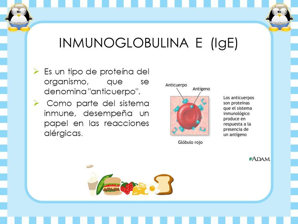 INMUNOGLOBULINA E (IgE)