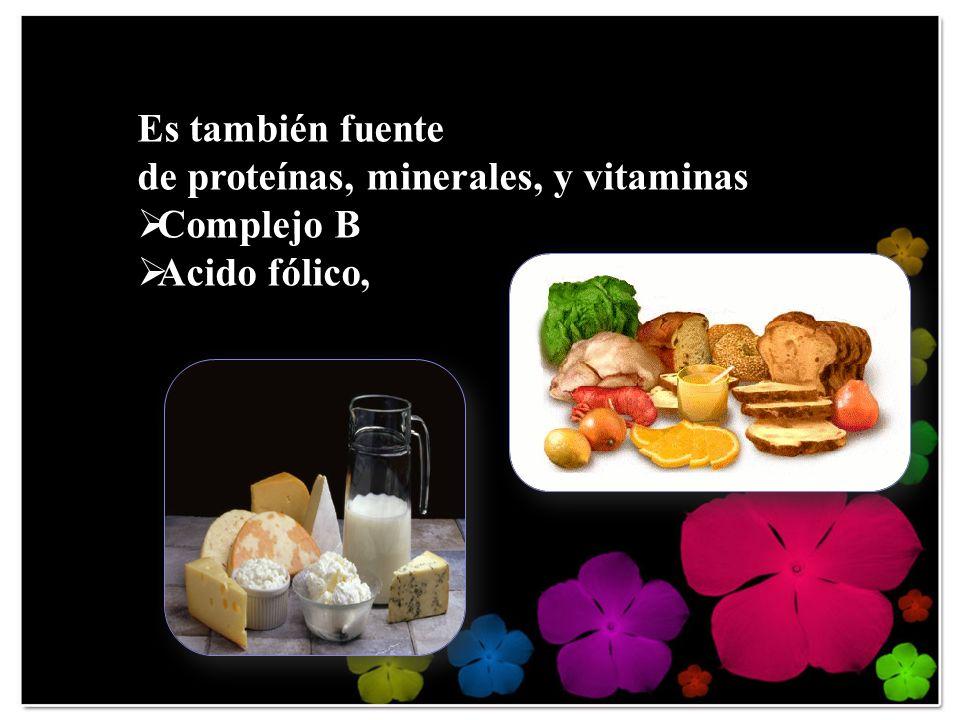 Es también fuente de proteínas, minerales, y vitaminas Complejo B