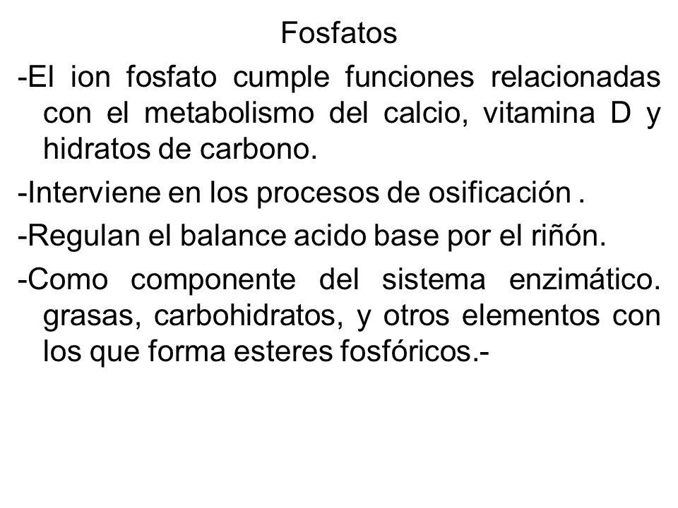 Fosfatos -El ion fosfato cumple funciones relacionadas con el metabolismo del calcio, vitamina D y hidratos de carbono.