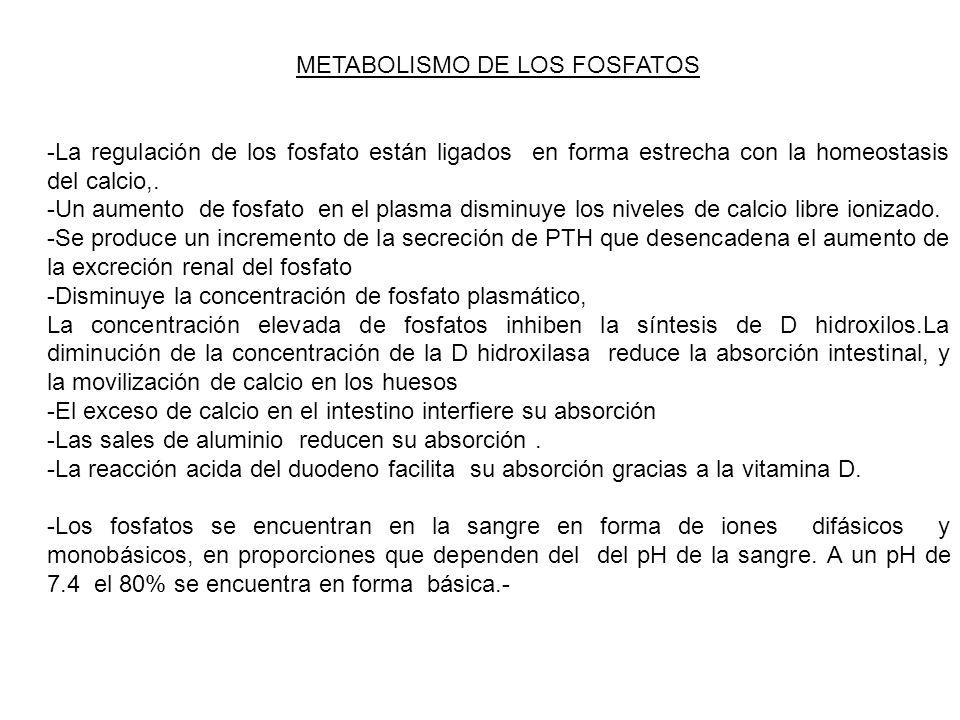 METABOLISMO DE LOS FOSFATOS